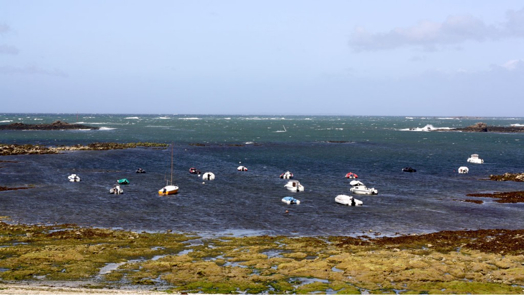 Petits bateaux sur les côtes de Quiberon
