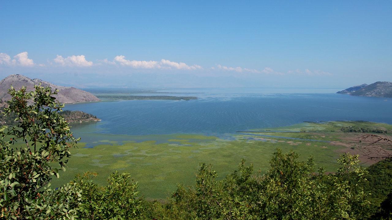 Parc naturel du lac de skadar