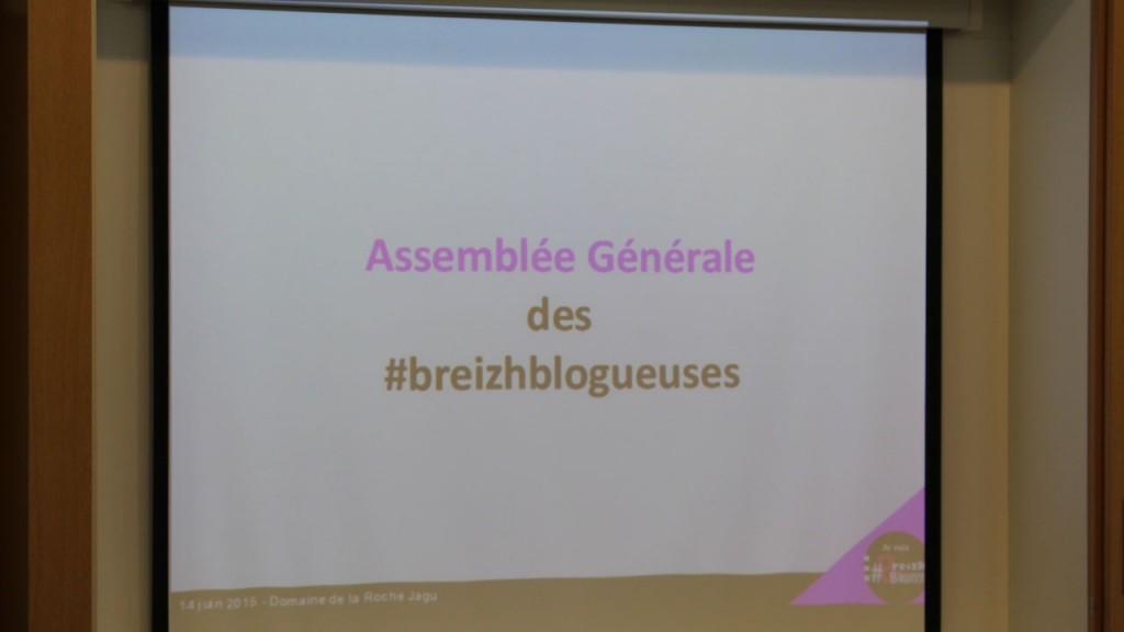 Assemblée Générale des Breizh Blogueuses