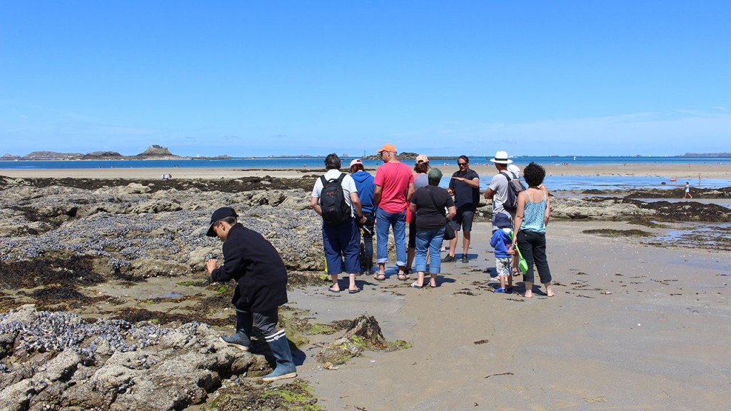 Visite guidée environnement marin