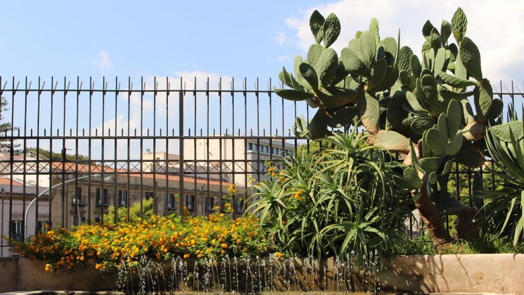 Jardin cactus Palerme